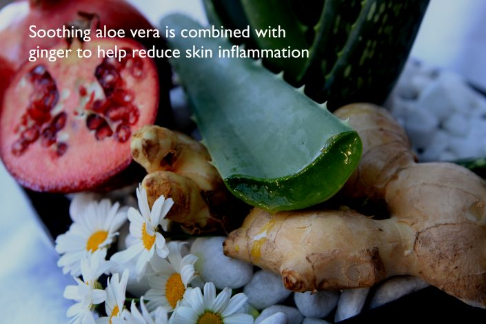 LAJIOE SKIN. Antichafe cream Calmmé.Aloe Vera and ginger some of the ingredients of Calmmé protect the skin you're in.LAJOIE SKIN.